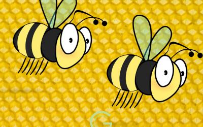 Naturopathie et produits de la ruche