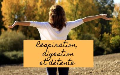 Respiration, digestion et détente